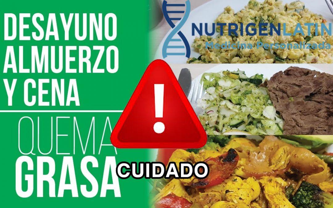 Vives haciendo dieta sin incorporar los hidratos de carbono???
